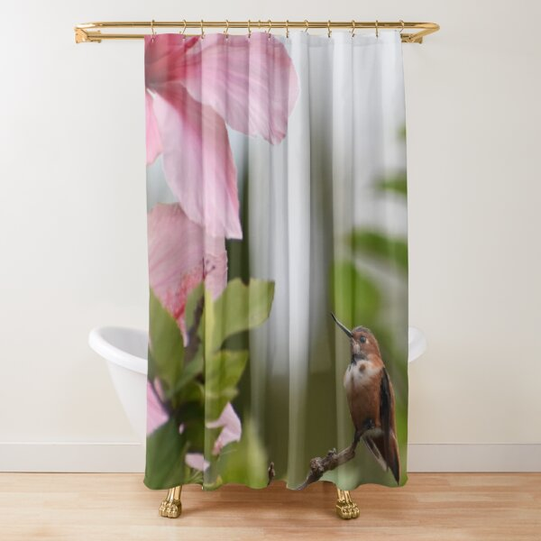 Hummingbird And Pink Hibiscus Flower Photo By Concetta Ellis Shower Curtain