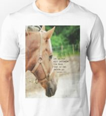 Hebrews 12 Race Unisex T-Shirt