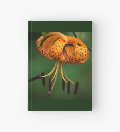 Tiger Lilly disguised as a Leopard Lilly Hardcover Journal