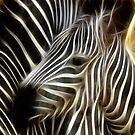Zebra Fractal Art by Delights