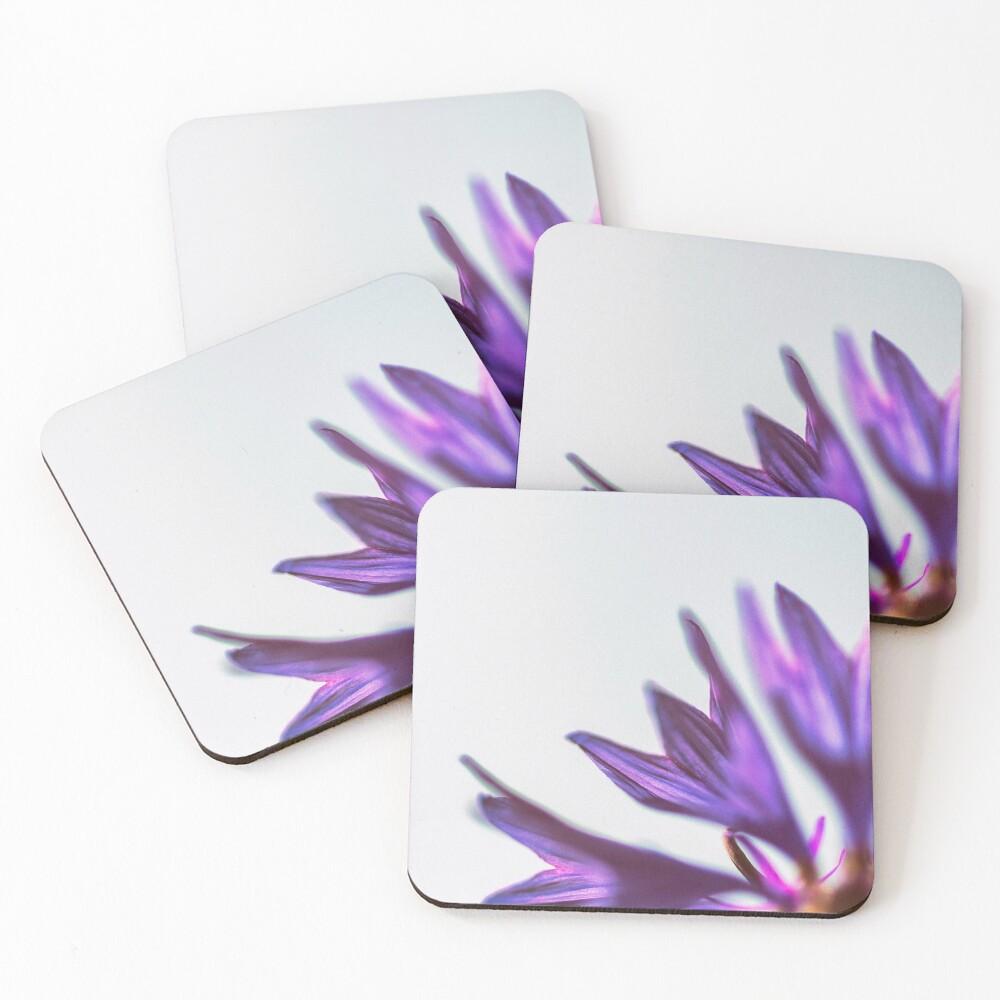 Flower Mystical Coasters (Set of 4)