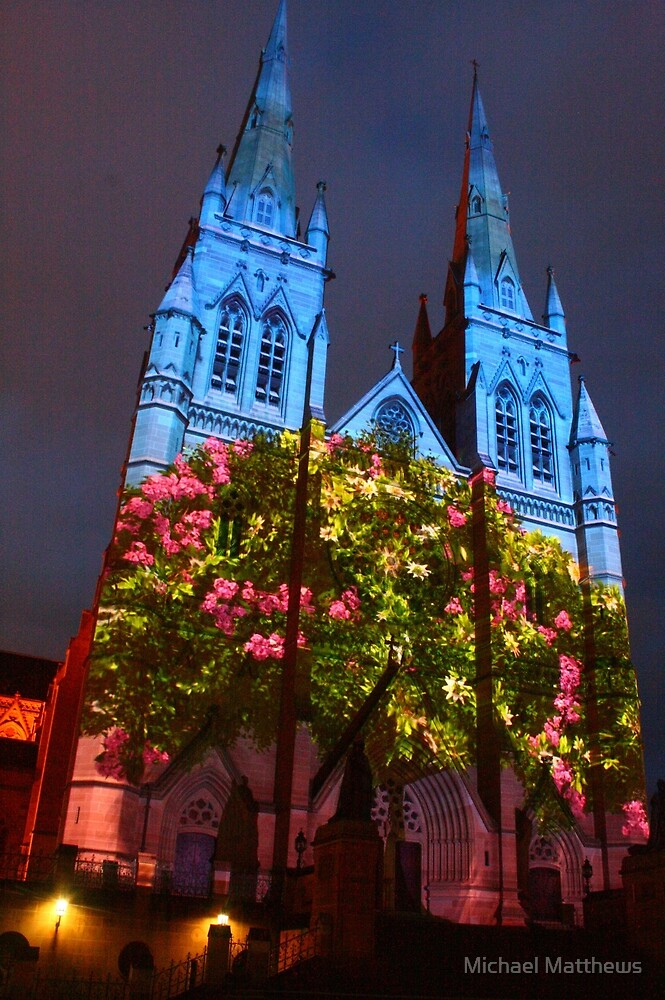 Flourishing St Mary's by Michael Matthews