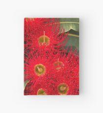 Eucalyptus Hardcover Journal
