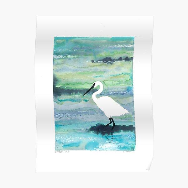 L'aigrette de la mer blanche Poster