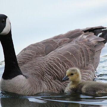 Mamma & Baby by Lazzolino
