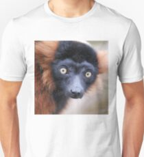 Lemur Gift: Gifts & Merchandise | Redbubble