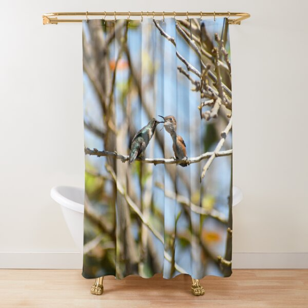Hummingbirds At Nature's Best Photo By Concetta Ellis Shower Curtain