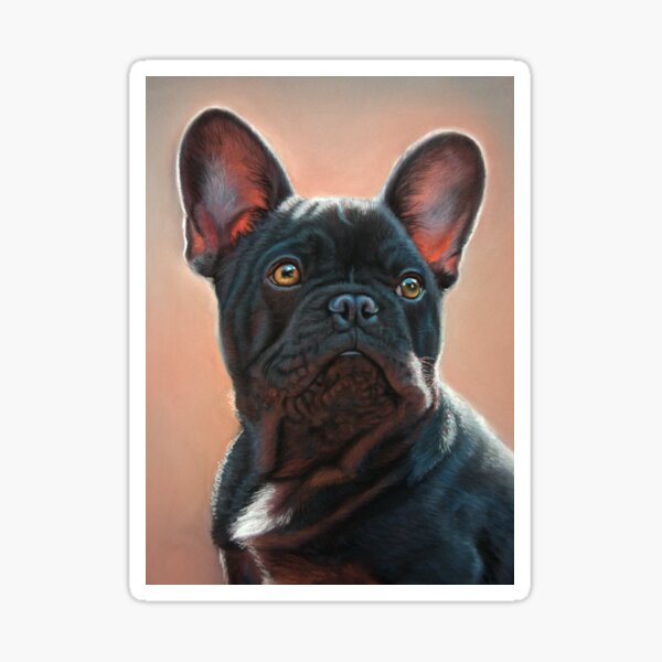 Black French Bulldog Sticker
