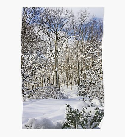 Snowy Winter Wonderland Poster