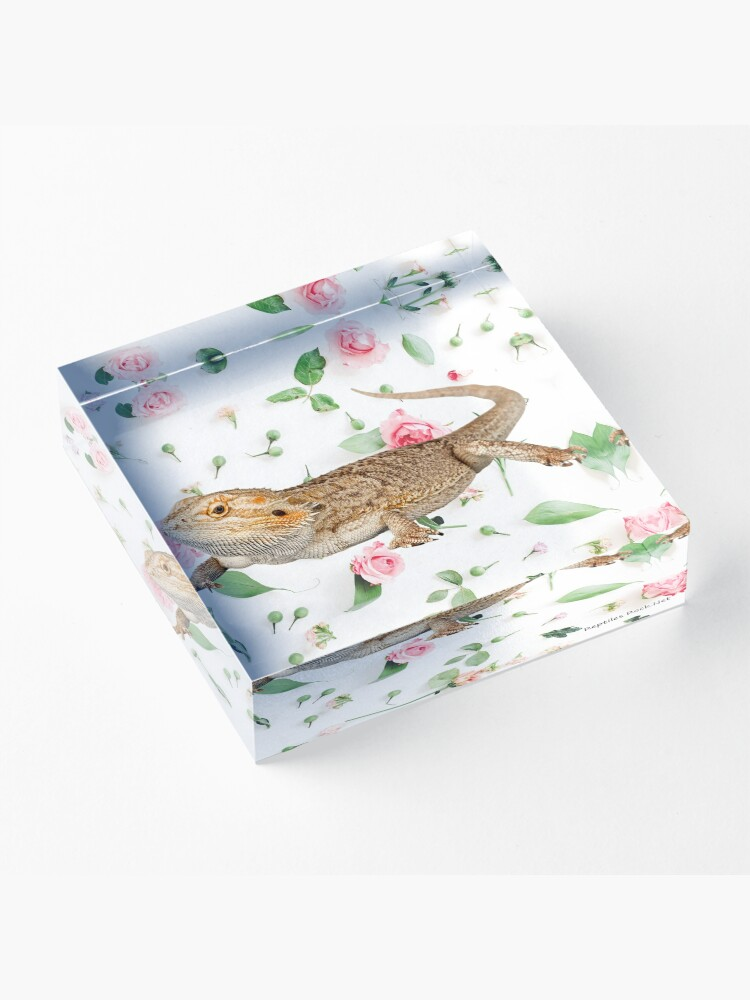 Alternate view of Bearded Dragon On A Carnation Background Acrylic Block