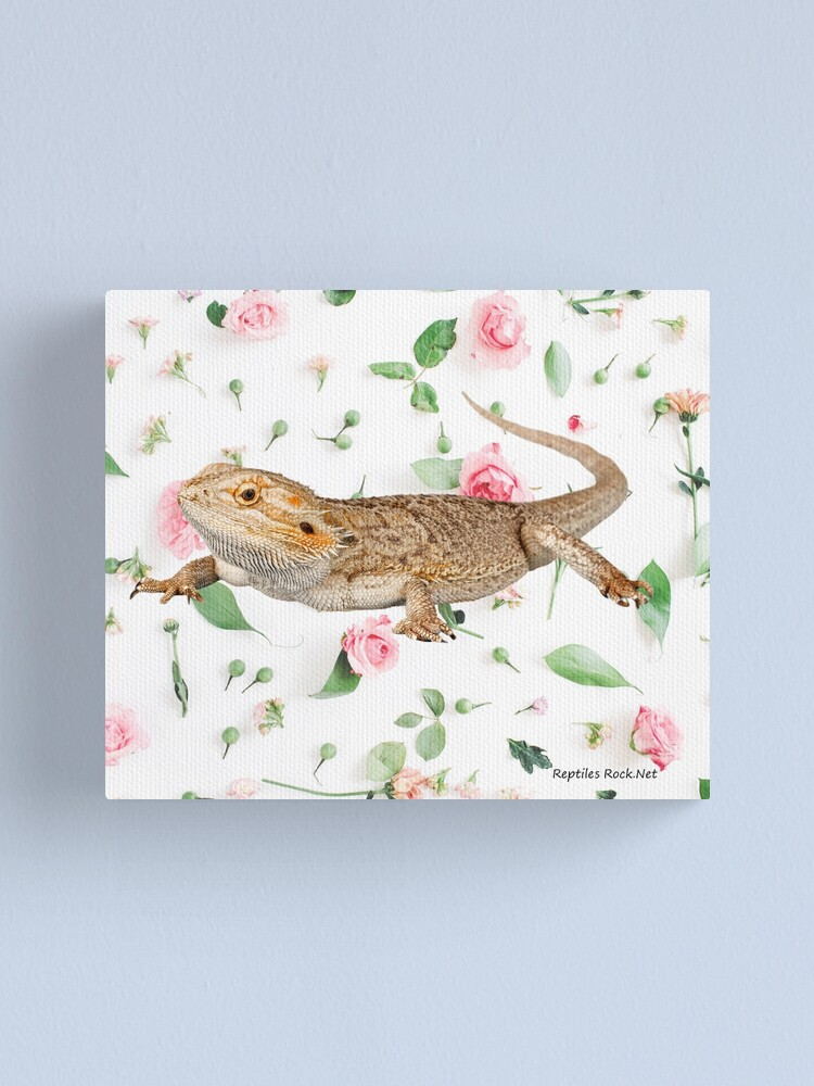 Alternate view of Bearded Dragon On A Carnation Background Canvas Print