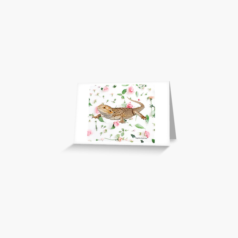 Bearded Dragon On A Carnation Background Greeting Card