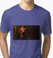 backlit leave during sunset  Tri-blend T-Shirt