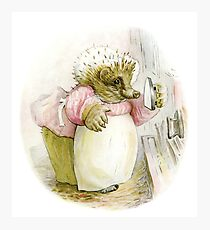 Mrs Tiggywinkle Beatrix Potter  Photographic Print
