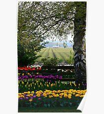 Tulip Festival Poster