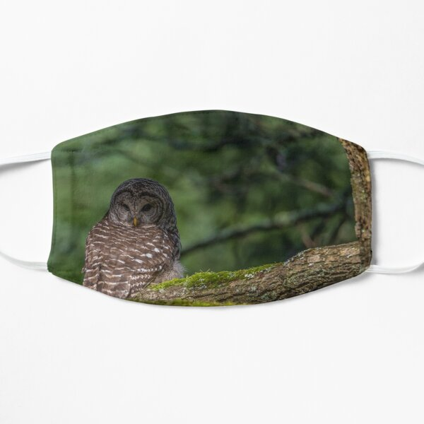 Barred Owl Pacific Northwest Mask