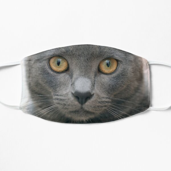 Russian Blue Cat Flat Mask