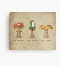 Mario Mycology Metal Print