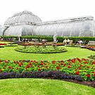 The Palm House at Kew Royal Botanic Gardens London by John Keates