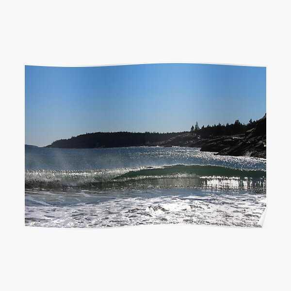 Beach in winter in Acadia Poster