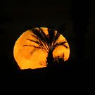 Arizona Moonrise by Christine Ford