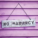 No Vacancy on Pink by William Fehr