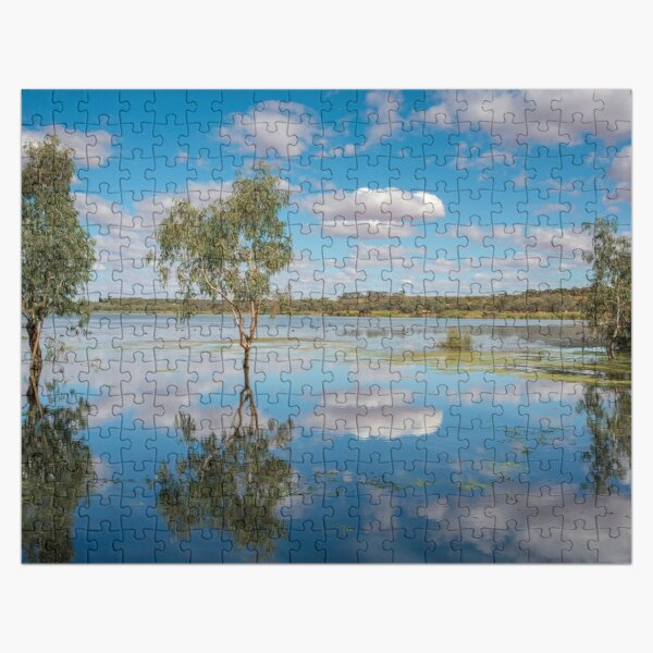 Reflective Wetlands Jigsaw Puzzle