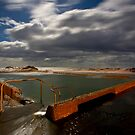 Tidal Pool Werri Beach by Andrew Bosman