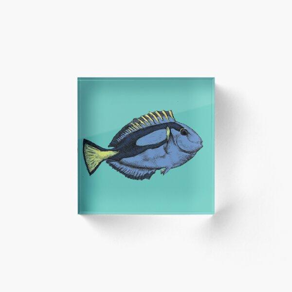 Blue Tang Acrylic Block