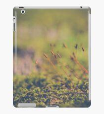 Fairy Hunt iPad Case/Skin