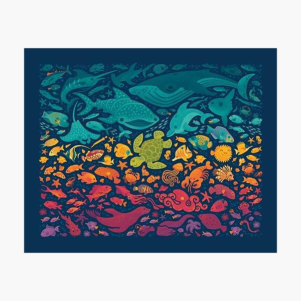 Aquatic Spectrum 2 Photographic Print