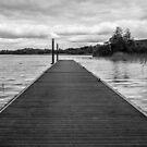 Boardwalk 1  by Martina Fagan