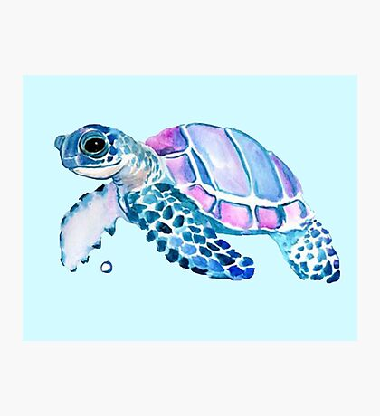 Lovely Turtle Photographic Print