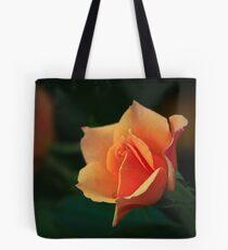 Rose light shadow Tote Bag