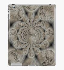 Eagles iPad Case/Skin