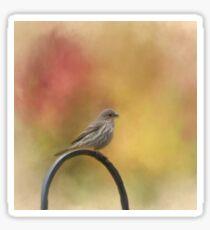 Female Finch Sticker