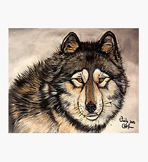 Painted Timber Wolf Artwork  Photographic Print