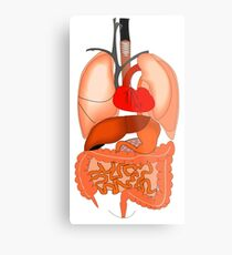 Internal Organs Metal Print
