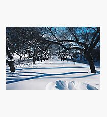 NYC Park in the Snow Photographic Print