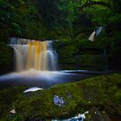Lower McLean Falls  by Liam Robinson