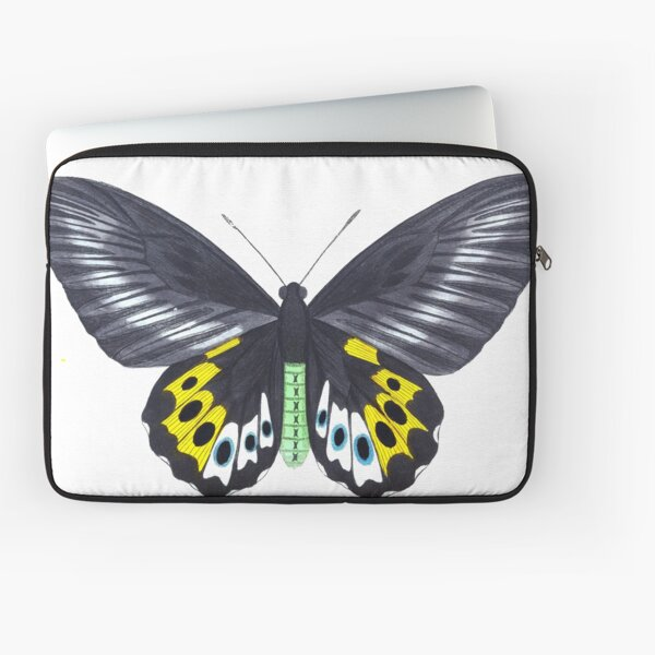 Vintage Panthous Butterfly Print (1789) Laptop Sleeve