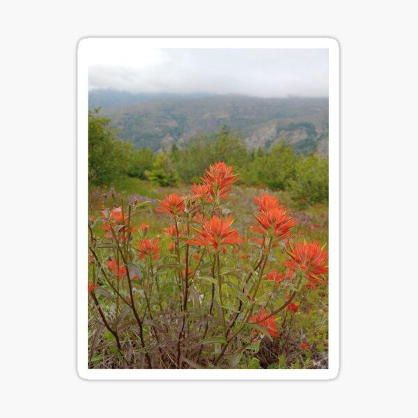 Red Wild Flowers on the Hillside in Washington Sticker