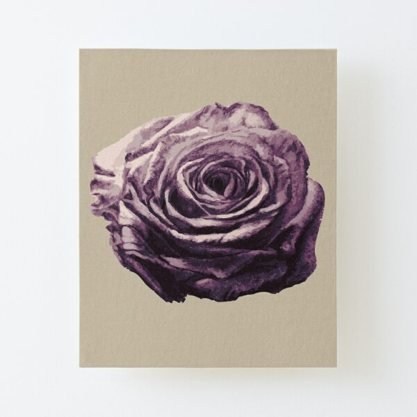 Purple and Lilac Open Floral Country Farm Rose in beige Canvas Mounted Print