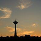 Skylon Tower At Dusk by Elizabeth  Lilja