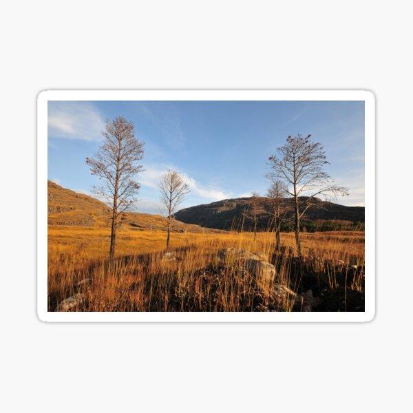 Glen Torridon Sticker