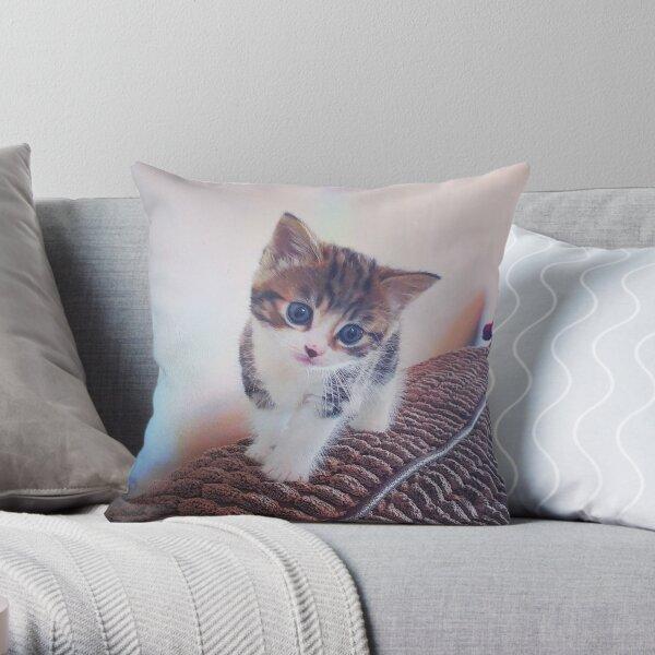Cute Kitten Throw Pillow