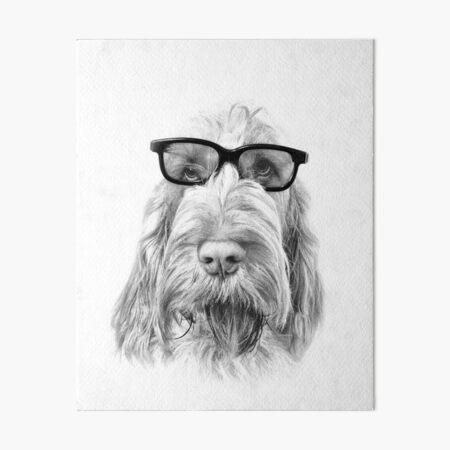Intelligent friend Spinone Art Board Print
