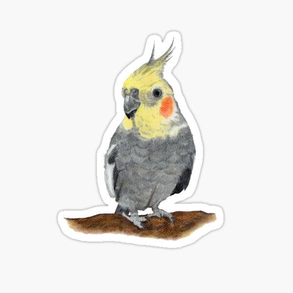 Cockatiel '' Fips '' Sticker