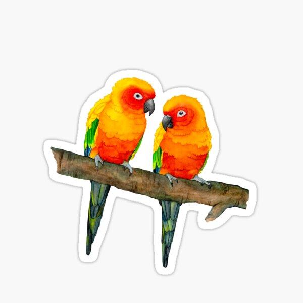 Sun parakeets Sticker