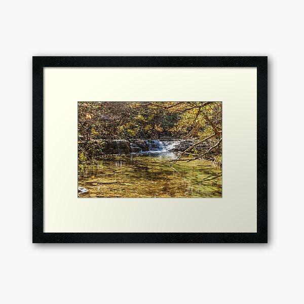 Waterfall Creek At Henning Conservation Framed Art Print
